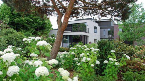 Föhre_Gartengestaltung_Hortensien_Nussbaum
