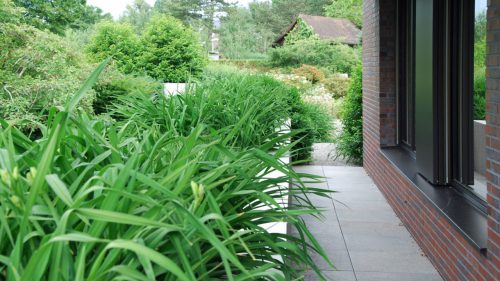 Gartengestaltung-Ziergräser-Hemerocallys