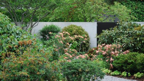 Moorbeet_Kies_Gartengestaltung