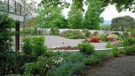 neu_10_Rhododendren-Kieshof-Gartengestaltung