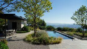 neu_3_Pool-Platane-Gartengestaltung-Gräser