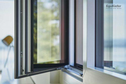 Detail Fenster (Foto: © Damian Poffet)